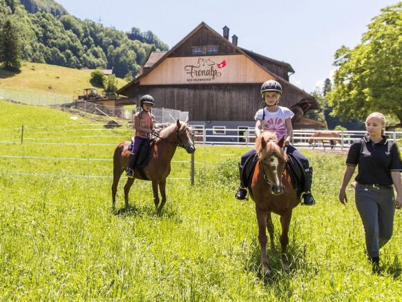 Farm experience and horse riding